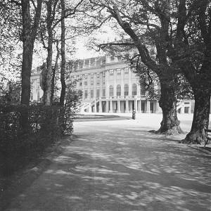 237 Schönbrunn